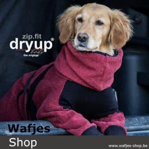 Dryup Body Zip.Fit Bordeaux