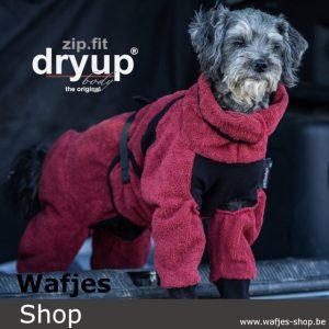 Dryup Body Zip.Fit mini bordeaux