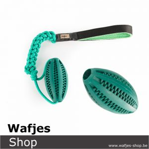 wafjes-bungee-rugby