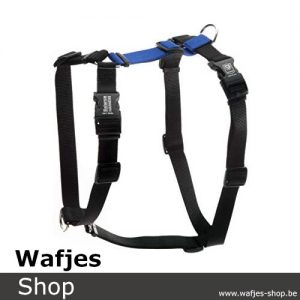 Blue-9-Balance-Harness