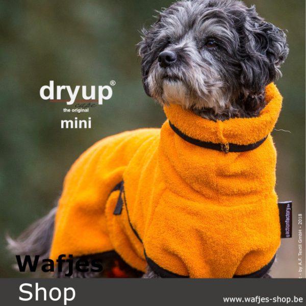 dryup cape mini Clementine