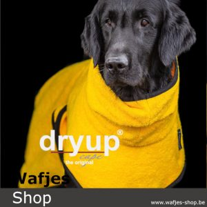 dryup Cape Yellow