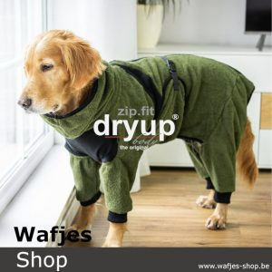 Dryup Body Zip.Fit Moss